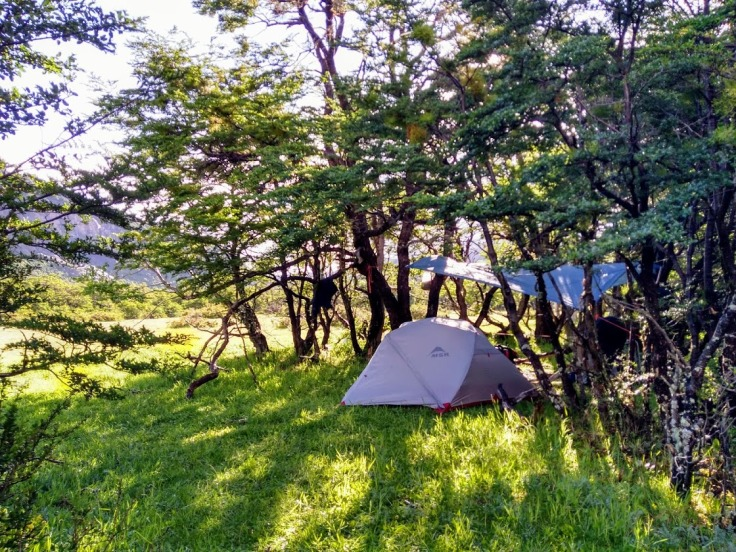 Camp Zapata, in a meadow area frequented by wild cows.